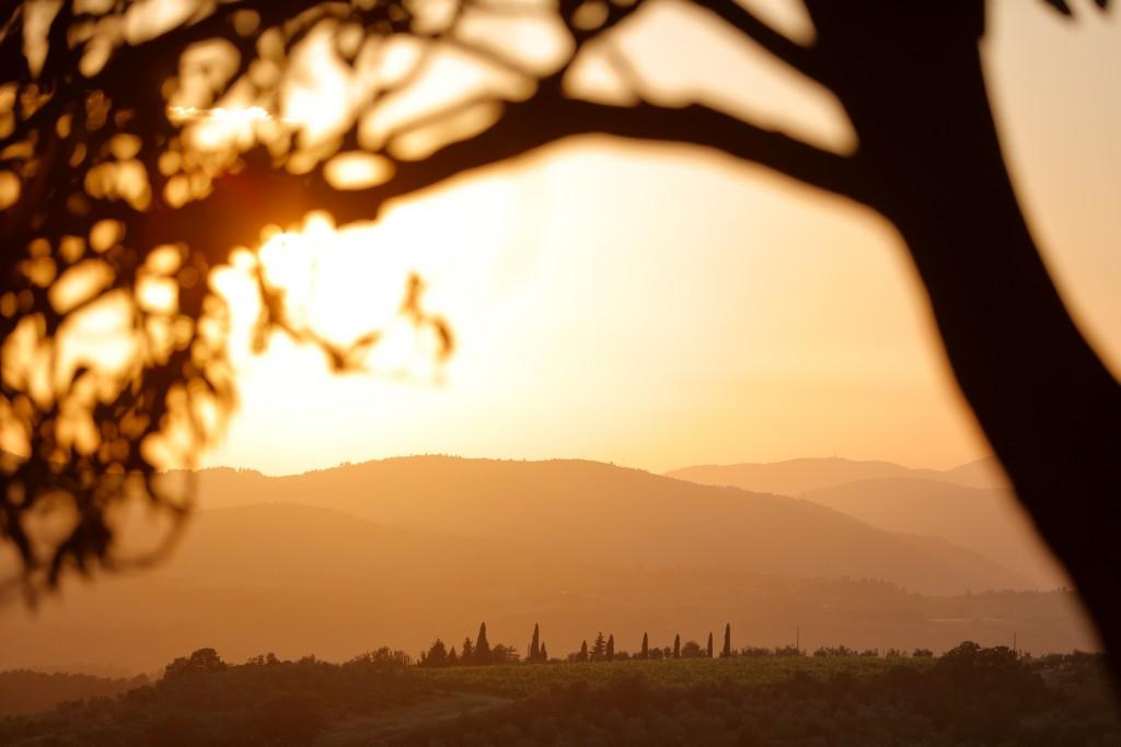 Tuscan Panorama - Holidays in Florence